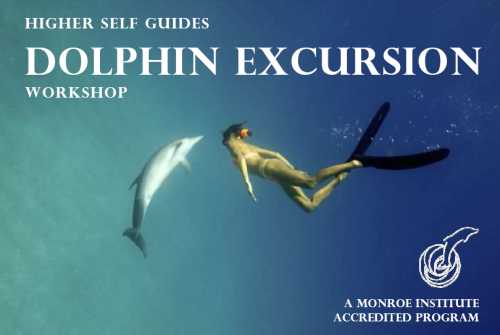 dolphin-excursion-workshop-logo